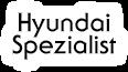 Offizielle Hyundai